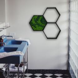mech na ścianę w ramie obraz heksagon