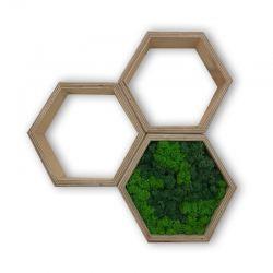 mech chrobotek obraz zestaw ramka heksagon mały